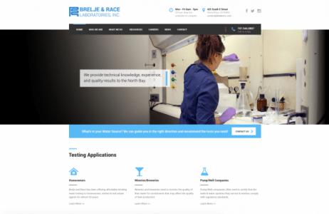 br-labs-inc-homepage