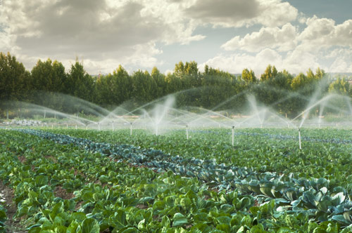 agriculture-water-testing